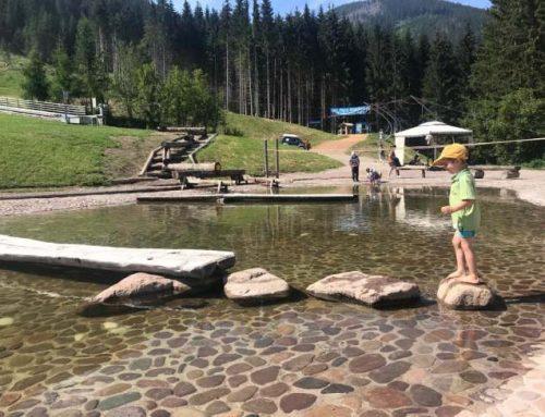 Parco Giochi da non perdere per la tua estate in Trentino