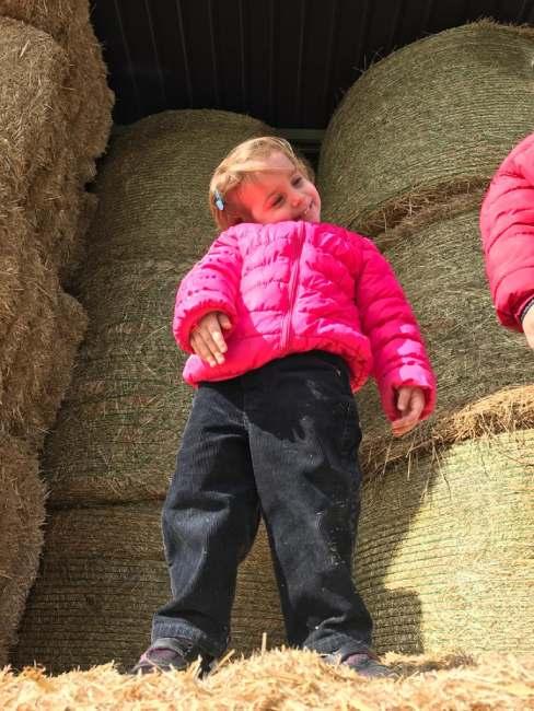 bambina fattoria didattica