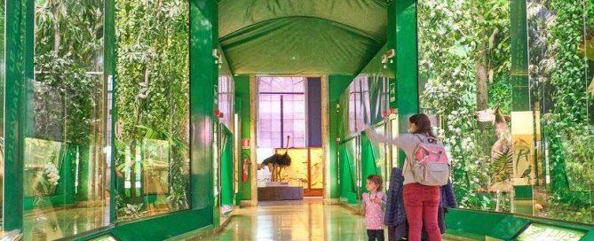 museo_storia_naturale_milano