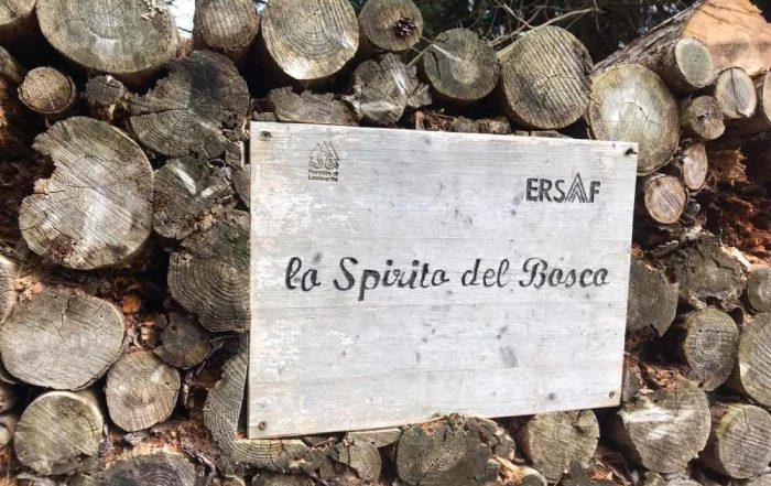 sentiero spirito del bosco